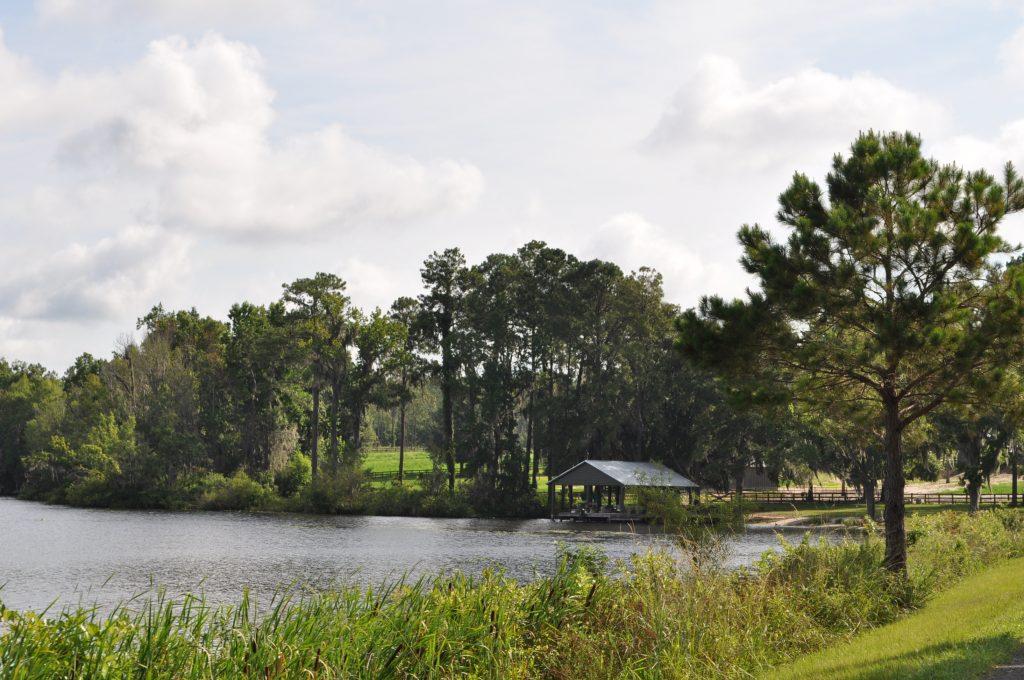 Langwood Plantation